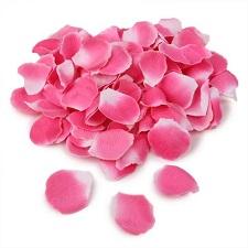 Rosenbl�tter in Pink