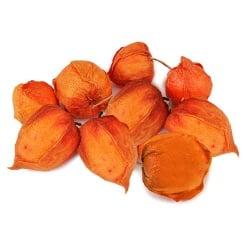 12 Physalis Lampionblumen Herbst, 50 mm
