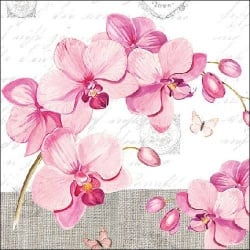 20er Pack Servietten Orchideen in Rosa 33 x 33 cm