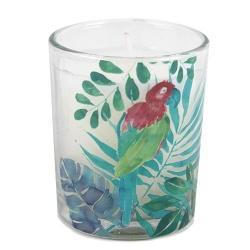 Kleines Kerzenglas, Duftkerze Tropical Island, 65 mm