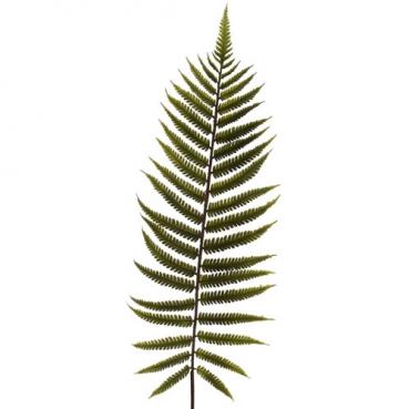 Kunstblume Farn, Dekoblatt, 71 cm