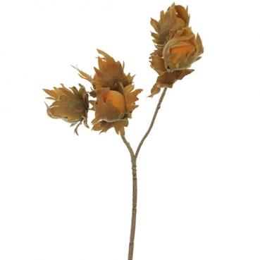 Deko Haselnuss Pick, 27 cm