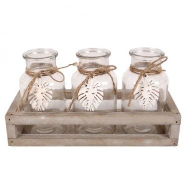 3 Glas Vasen mit Blattanhänger in einer Holzbox, 24,5 cm