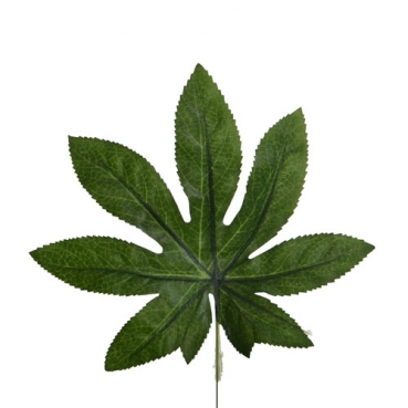 Kunstblume Aralia Dekoblatt am Draht, Blattgröße: 20 cm
