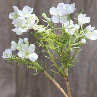 Kunstblume Blütenzweig in Weiß, 25 cm
