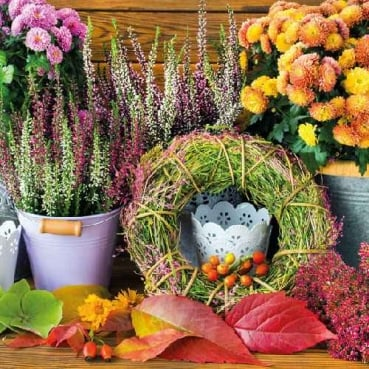 20er Pack Servietten Herbst Feeling, 33 x 33 cm