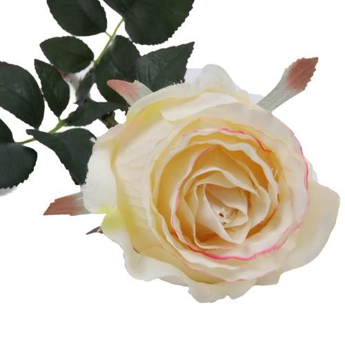 kunstblume-rose-in-creme-mit-blutenblattrand-in-pink-76-cm