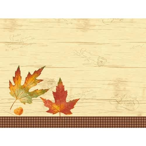 duni-papier-tischsets-flavour-30-x-40-cm