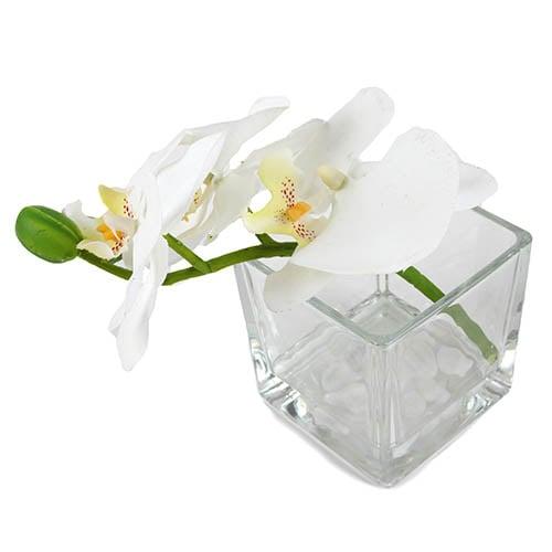 vierkantglas-mit-dekosteinen-und-orchideenzweig-in-wei-