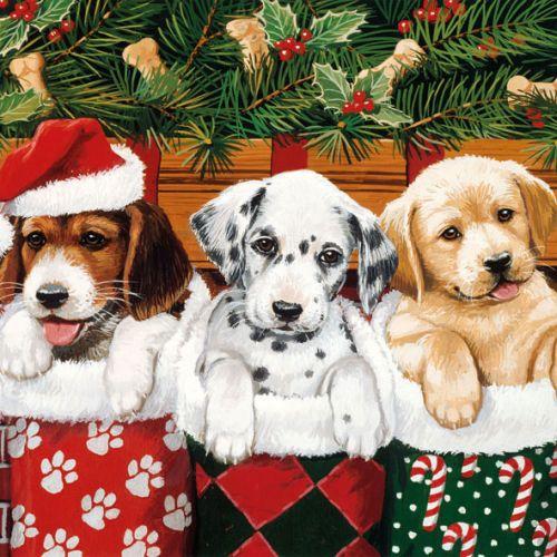 20er pack servietten weihnachten hundewelpen mit nikolausm tze 33 x 33 cm - Duni weihnachtsservietten ...