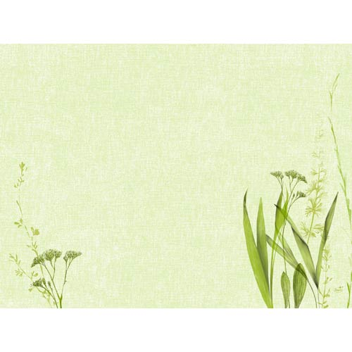 duni-papier-tischsets-liz-30-x-40-cm