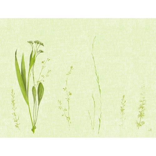 duni-papier-tischsets-liz-35-x-45-cm