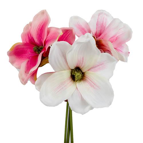 3er-bund-magnolien-in-wei-rosa-26-cm