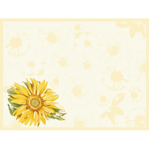 duni-dunicel-tischsets-sunray-30-x-40-cm