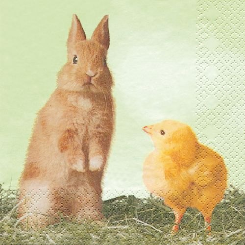 servietten-easter-duo-33x33