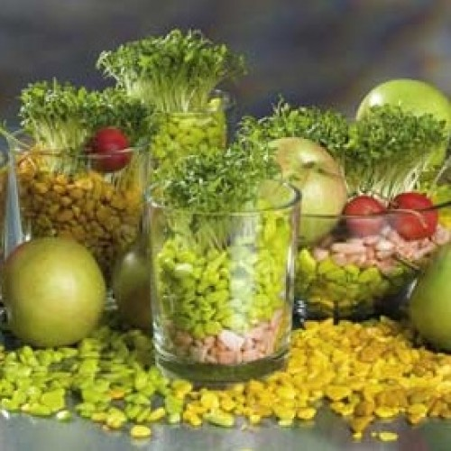 Glasvasen und keramikvasen zaubern sie tolle effekte in ihre tischdeko - Tischdekoration naturmaterialien ...
