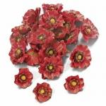 24er Pack Mohnblüten als Streudeko in Dunkelrot