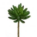 Kunstblume Sukkulente Haworthia, 16 cm