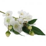 Kunstblume Pfirsichblütenzweig in Weiß, 37 cm