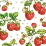 20er Pack Servietten Erdbeeren 33 x 33 cm