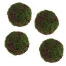 4 kleine Rebenkugeln mit Moos, 50 mm