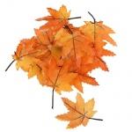 12 kleine Textil Ahornblätter, Herbst in Hellorange, 50 mm