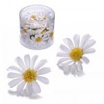 25er Pack Margeritenblüten in Weiß