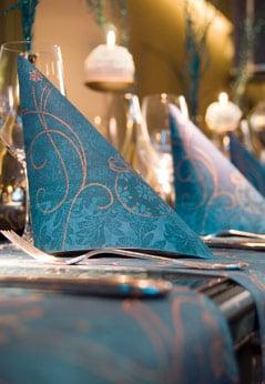 Alles von duni servietten tischsets tischdecken und for Duni servietten weihnachten