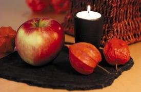 Tischdeko mit Naturmaterialien