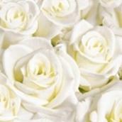 Reinheit Und Liebe Die Tischdekoration Fur Die Rosenhochzeit