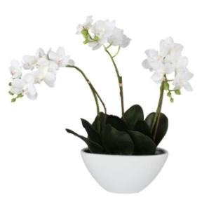 Tischdeko mit Blumen Orchideen