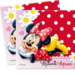 Kindergeburtstag Minnie